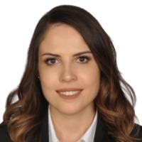 Hazal Demir